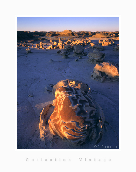 Bisti Badlands, Turtles Walk, New Mexico